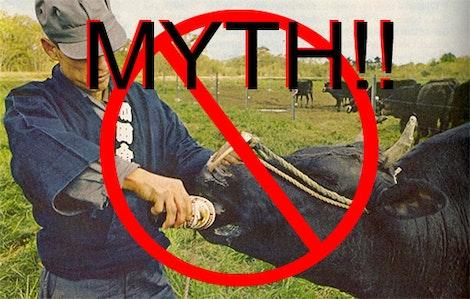 Wagyu beer myth